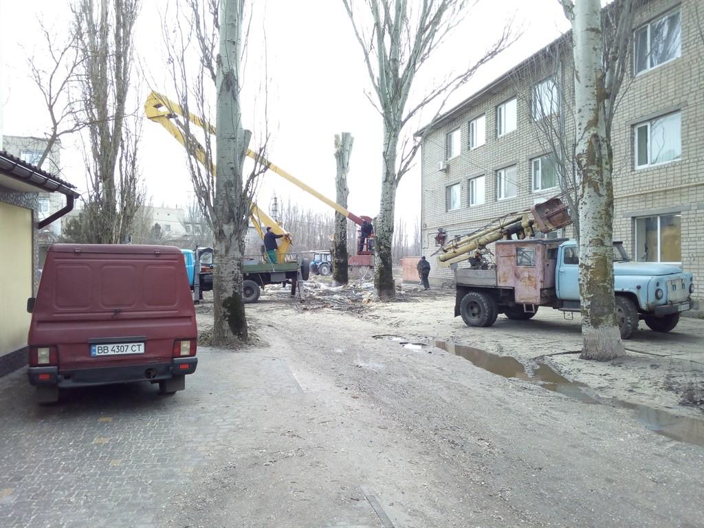Подрезание тополей по улице Строителей. Очаков.