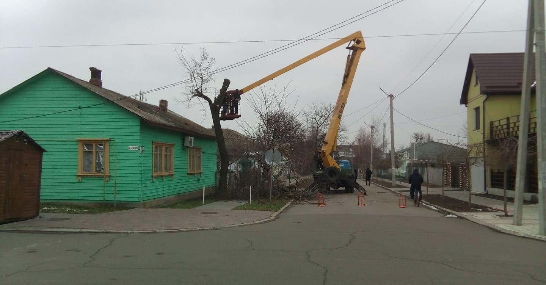 Подрезание деревьев на центральной площади Очакова