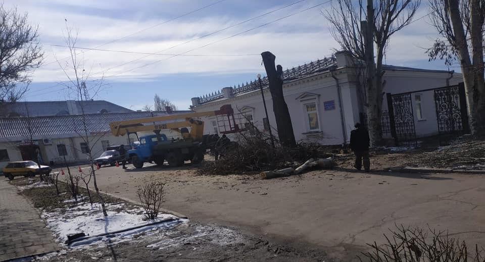 Спиливание деревьев возле Очаковской художественной школы